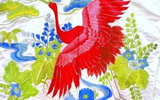 Oblečení, Ptáci