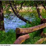 Příroda, základ zdraví