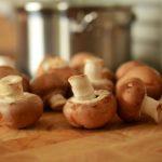 Sbírejte houby a připravte si z nich vynikající pokrmy